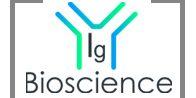 IgBioscience